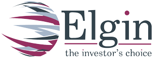 Elgin Group LLC